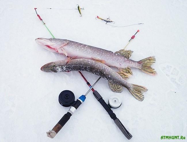 зимняя рыбалка. ловля щуки на балансир