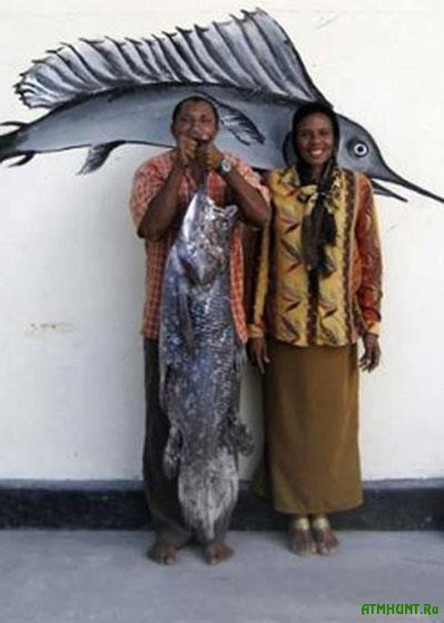 V Indonezii rybaku v seti popalas' iskopaemaja ryba celakant (foto) 1