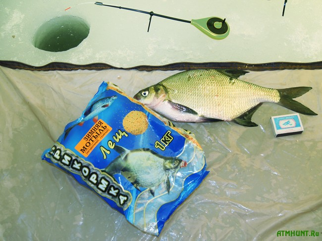 геркулес для рыбалки на карася