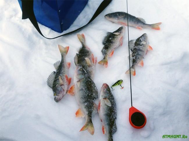 лучшие зимние воблеры для подледной ловли