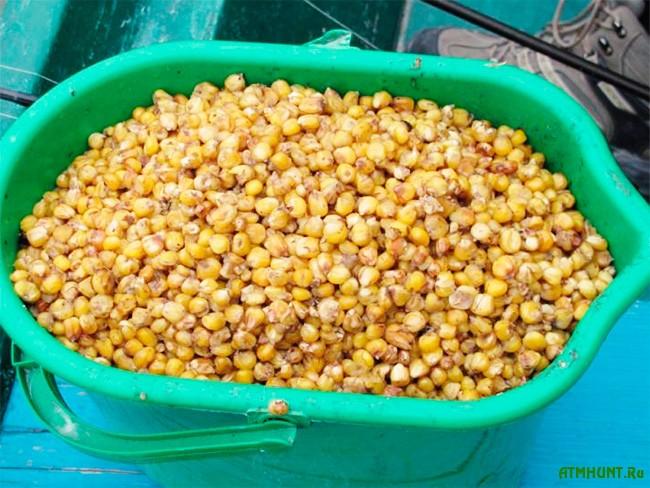 кукуруза для рыбалки на сазана