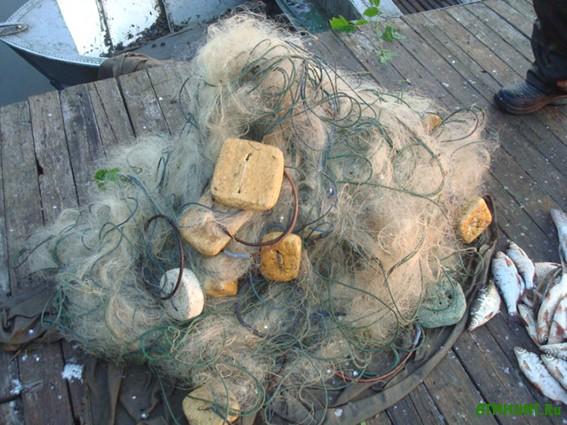 рыболовная база кривец